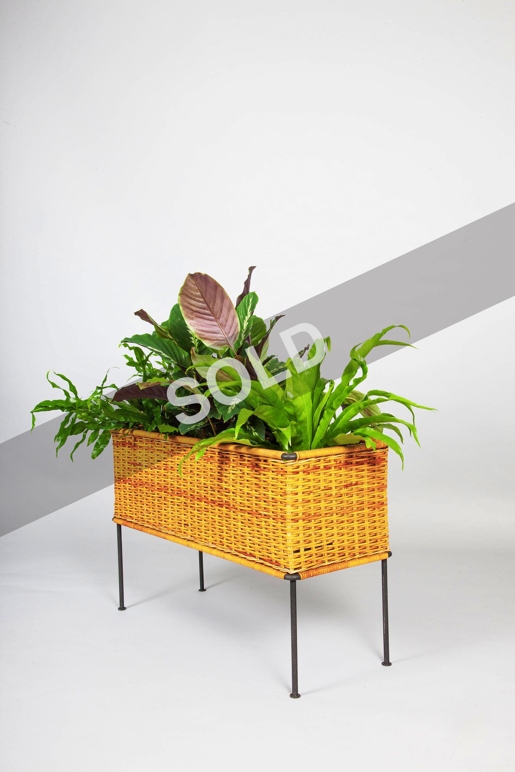 Carl Aubock iron planter